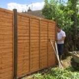Paul installing new Waney fence panels