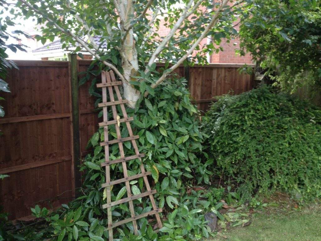 Replace Damaged Fencing In Oakham Peterborough Improvements