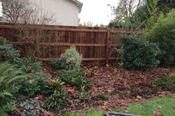 Feathedge Fencing installed in Peterborough