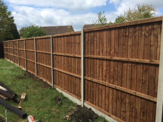 "6ft 6"" Fencing Panels on concrete posts"