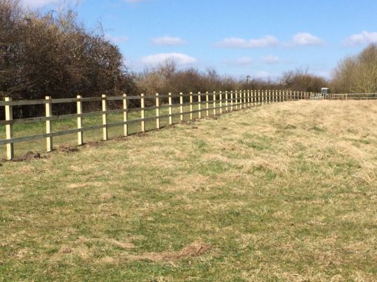 Agricultural 3 rail and post fencing in Ely