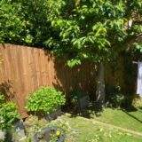 Featheredge Fencing Stamford